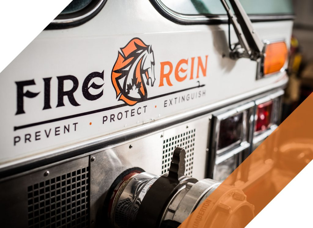 Fire Rein web blog image 1