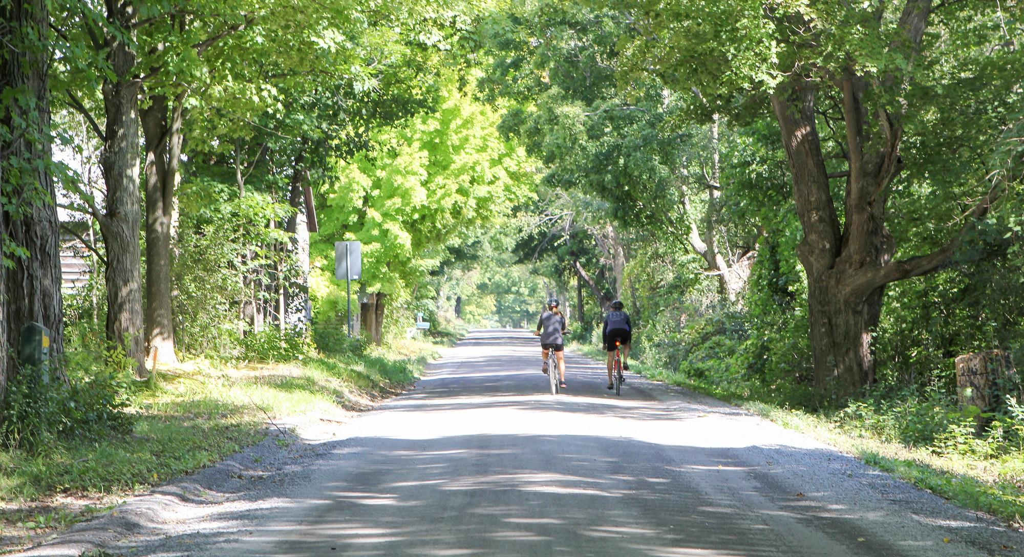 CyclingBlog2.jpg