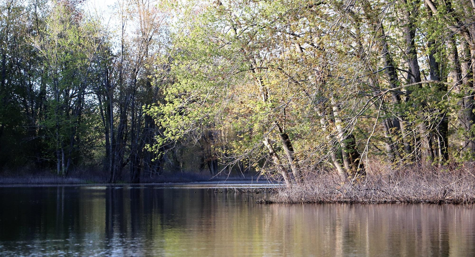 Salmon River Kayak Spring3.jpg