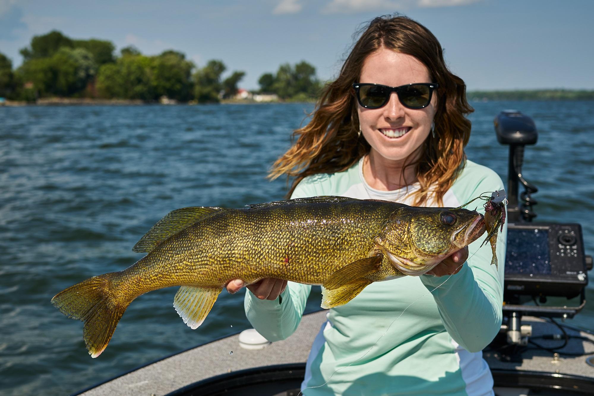 Ashley walleye