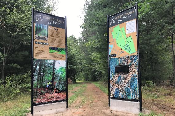Lennox & Addington County Forest Trail