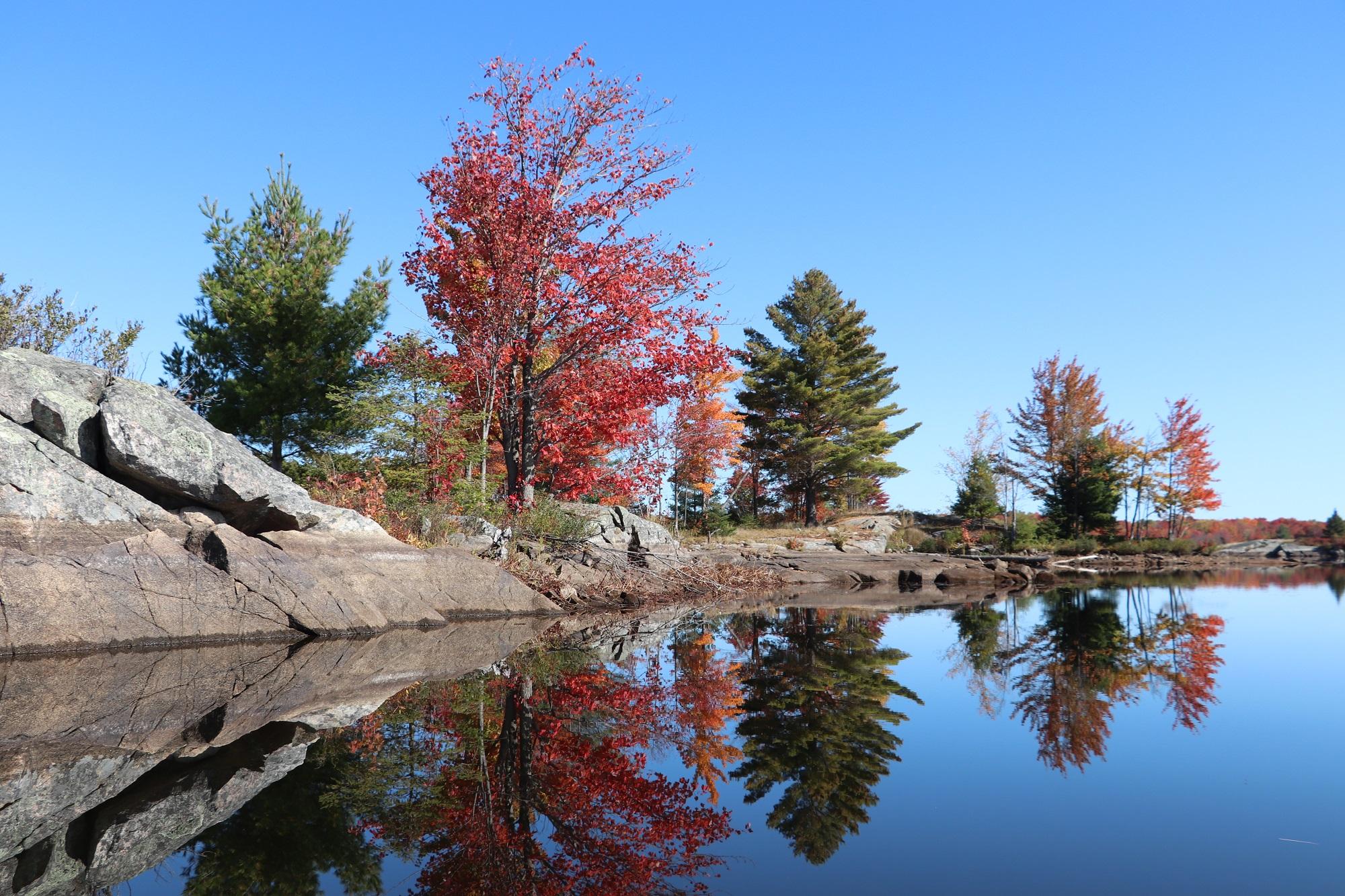 Deerock Lake Fall 7 Web.jpg