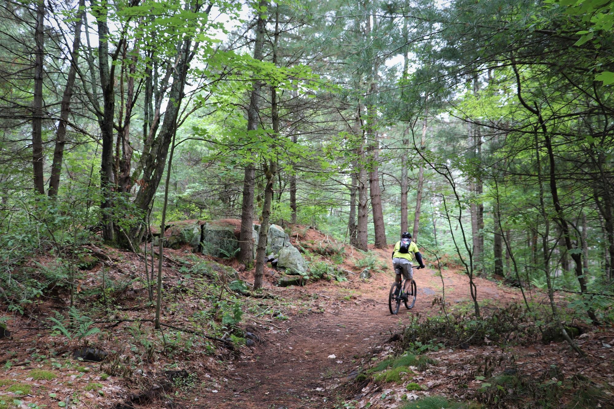 Mountain Biker 1 Web_2.jpg