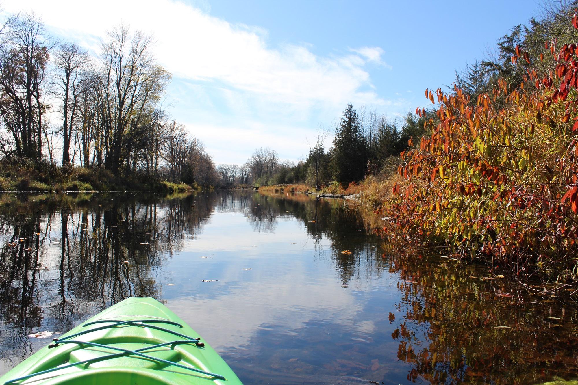 Kayak Napanee River Fall Curl Road 3.jpg