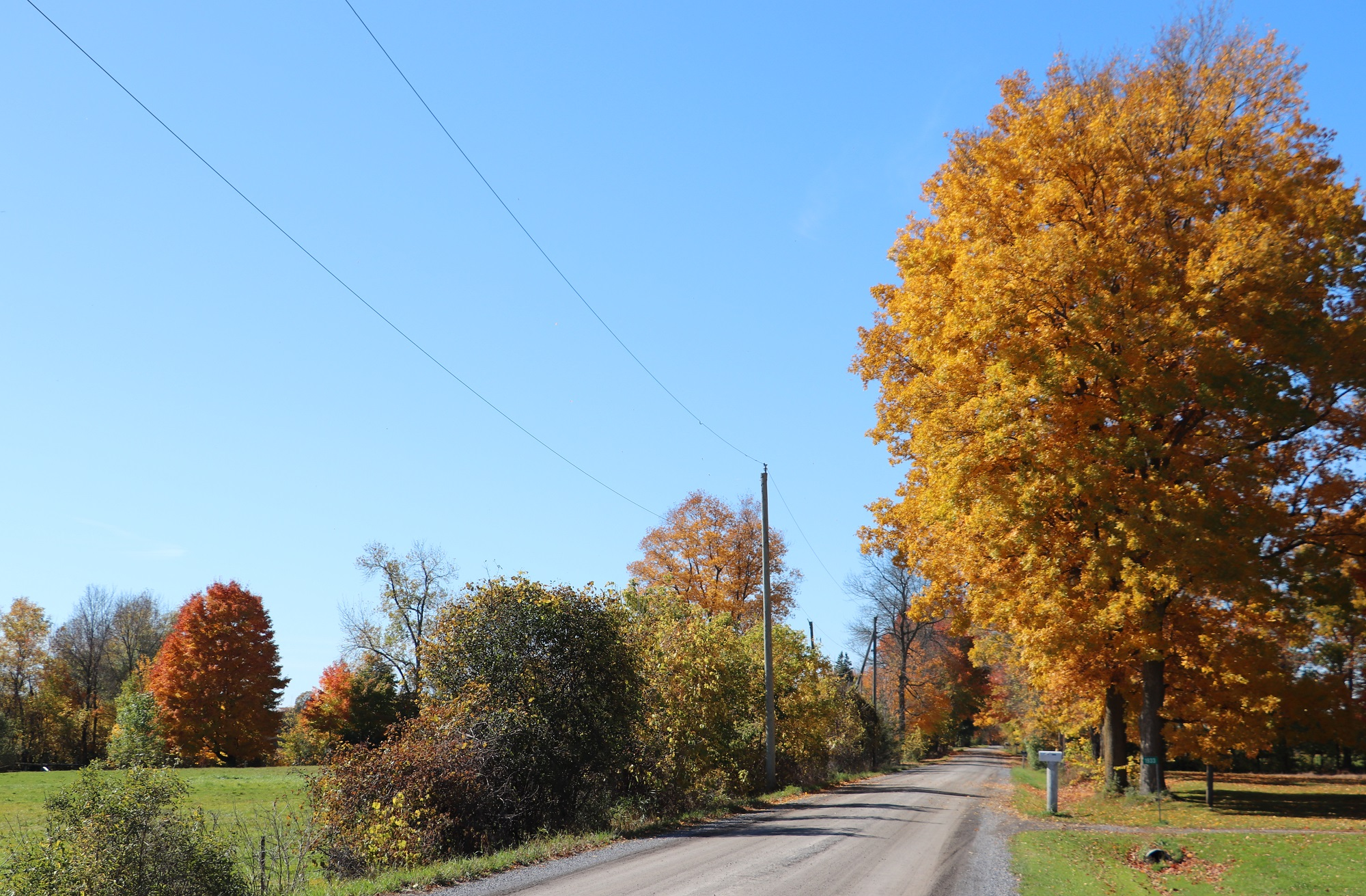 Switzerville Road 1_0.jpg